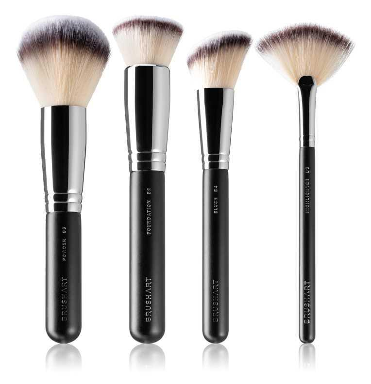 BrushArt Professional Face Brush set makeup bags