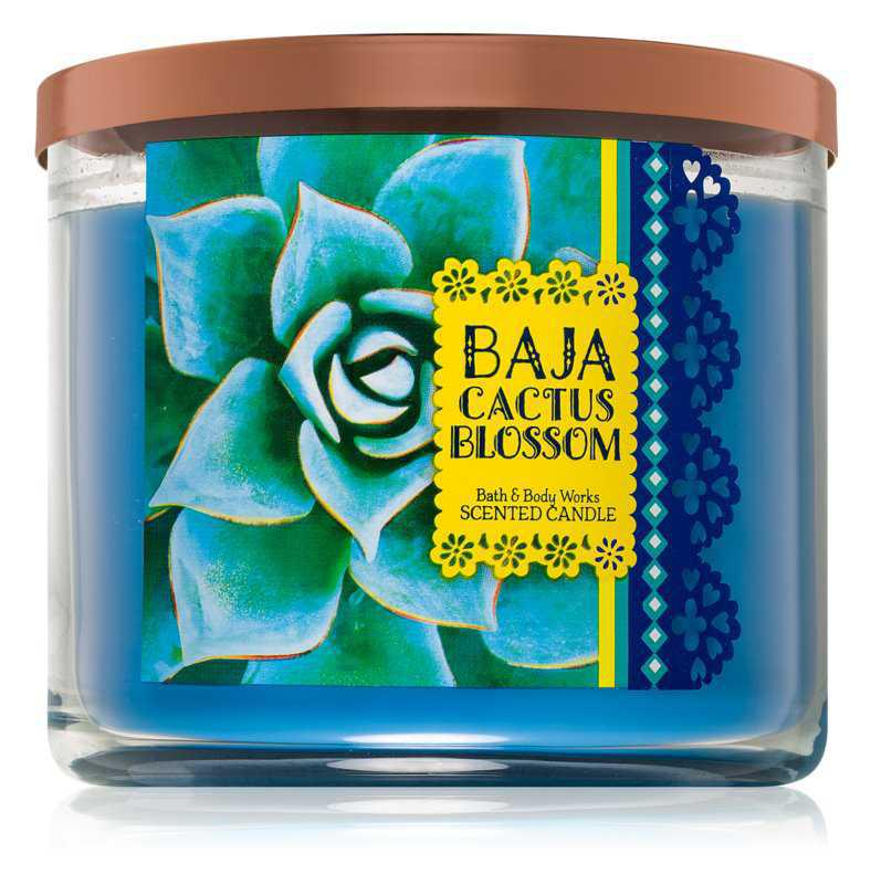 Bath & Body Works Baja Cactus Blossom