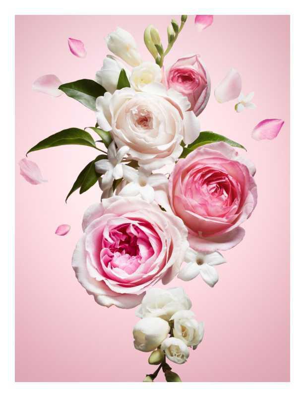 Viktor & Rolf Flowerbomb women's perfumes
