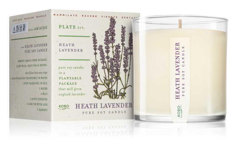 KOBO Plant The Box Heath Lavender