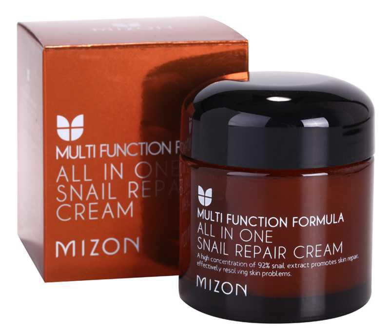 Mizon Multi Function Formula problematic skin